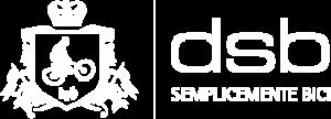 DSB-bonandrini-logo