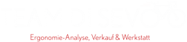 logo_teamdisevo